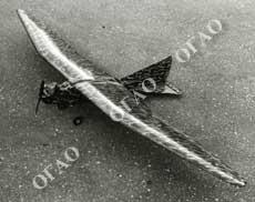 Руководство По Орнитологическому Обеспечению Полётов В Гражданской Авиации - фото 11